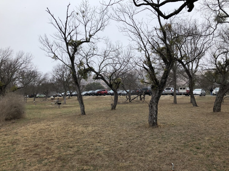 ST_01_TX_ST-Park